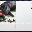 Postage stamp with the image of a cat — ストック写真