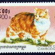 Postage stamp with the image of the cat — Zdjęcie stockowe