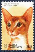 Postzegel met de afbeelding van de kat — Stockfoto
