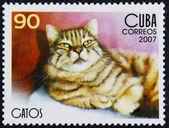 Briefmarke mit dem bild der bonze — Stockfoto