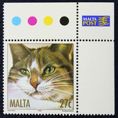 Postage stamp with the image of a cat — Stock fotografie