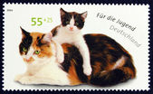 Postage stamp with the image of the cat and kitten — Stock Photo