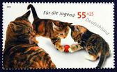 Kedi ve yavru kedi oyun görüntü ile posta pulu — Stok fotoğraf