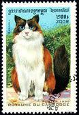 Francobollo con l'immagine di un gatto — Foto Stock