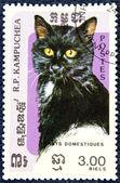 Estampilla con la imagen de un gato — Foto de Stock