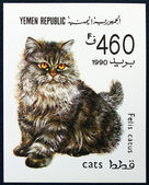 Postage stamp depicting the cat — Stock Photo