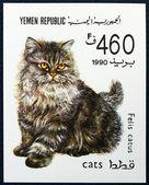 Frimärke föreställande katt — Stockfoto