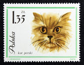 Postage stamp with the image of a cat — Stok fotoğraf