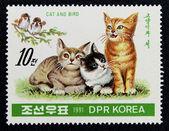 Selo com a imagem de um gatinhos e aves — Foto Stock