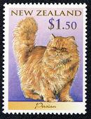 Postzegel met de afbeelding van een perzische kattenras — Stockfoto