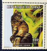 Postage stamp with the image of the cat (Maine coon) — Foto Stock