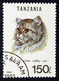 猫の煙のようなペルシャの品種のイメージで郵便切手. — ストック写真