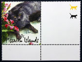 γραμματόσημο με την εικόνα μιας γάτας — Φωτογραφία Αρχείου