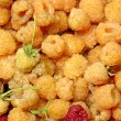 Stock Photo: yellow raspberry&quot