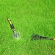 Garden tools for lawn care — 图库照片