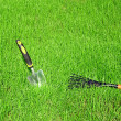 Garden tools for lawn care — Stok fotoğraf