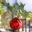Christmas red ball on fir-tree branch — Foto de Stock
