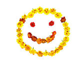 Smiley face made of flowers isolated — Stock Photo