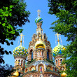 Stock Photo: Cathedral of Resurrection on Spilled Blood in St. Petersbur