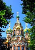 Die auferstehungskirche verschüttetes blut in st. petersbur — Stockfoto