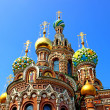 Cathedral of the Resurrection on Spilled Blood in St. Petersbur — Stockfoto
