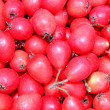 Background is of red berries of hawthorn — Foto de Stock