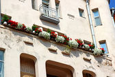 Red and white flowers on balcony building — Photo
