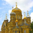 Uspenskoe courtyard Optina Pustyn monastery in St. Petersburg — ストック写真