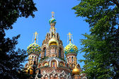Cathedral of the Resurrection on Spilled Blood in St. Petersburg — Stock Photo