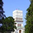 White Tower in Tsarskoye Selo (Leningrad region) — Stock Photo #41014355
