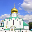 Feodorovsky Sovereign's Cathedral in Pushkin (Leningrad regi — Stock Photo #41146533