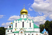 Feodorovsky Sovereign's Cathedral in the Pushkin (Leningrad regi — Stock Photo