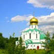 Feodorovsky Sovereign's Cathedral in Pushkin (Leningrad regi — Stock Photo #41230109