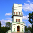 White Tower in Tsarskoye Selo (Leningrad region) — Stock Photo #41230145