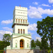 White Tower in Tsarskoye Selo (Leningrad region) — Stock Photo #41230147