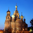 Cathedral of the Resurrection on Spilled Blood (Church of Our Sa — Stock Photo #41281869