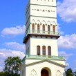 White Tower in Tsarskoye Selo (Leningrad region) — Stock Photo #41325391