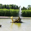 Stock Photo: Fountain in Peterhof sculpture in form of sedragon in Pe
