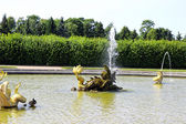 Fountain in Peterhof sculpture in the form of a sea dragon in Pe — Stock Photo