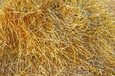 Background of dry rye straw — 图库照片