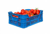 Red tomatoes in a plastic blue box isolated — Stock Photo