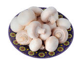White mushrooms on plate isolated on white background — Stock Photo