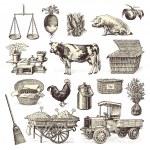 Farmers' market design elements — Stock Vector #48981377