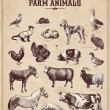 Set of vintage farm animals — Stock Vector #48981999