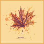 Autumn leaf with watercolor splats — Vector de stock