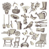 Vintage garden design elements — Vector de stock