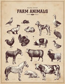 Set of vintage farm animals — Vector de stock
