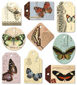 Retro tags - butterflies — Stock Photo