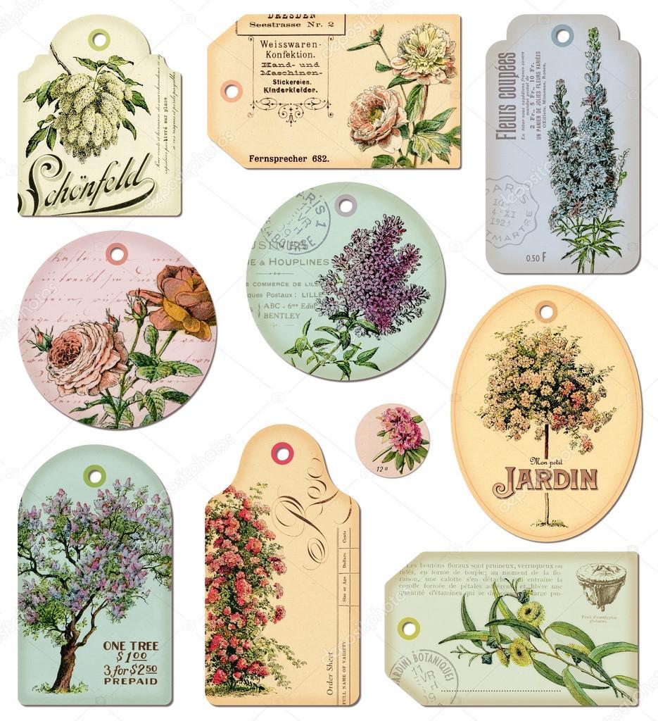 Теги для цветов