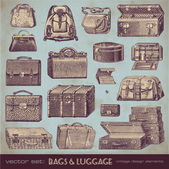 Vintage bags and luggage — Stock Vector